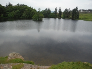 Out Dubs Tarn - Esthwaite Water 027