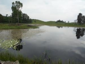 Out Dubs Tarn - Esthwaite Water 078
