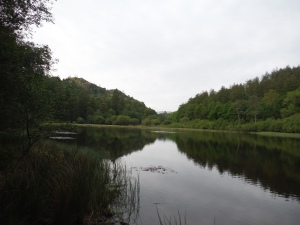 Yew Tree Tarn (15)