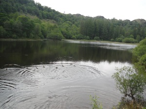 Yew Tree Tarn (2)