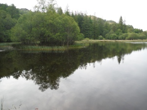 Yew Tree Tarn (21)