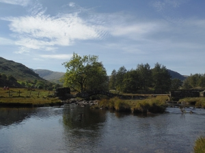 Little Langdale Tarn 025