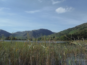 Little Langdale Tarn 051